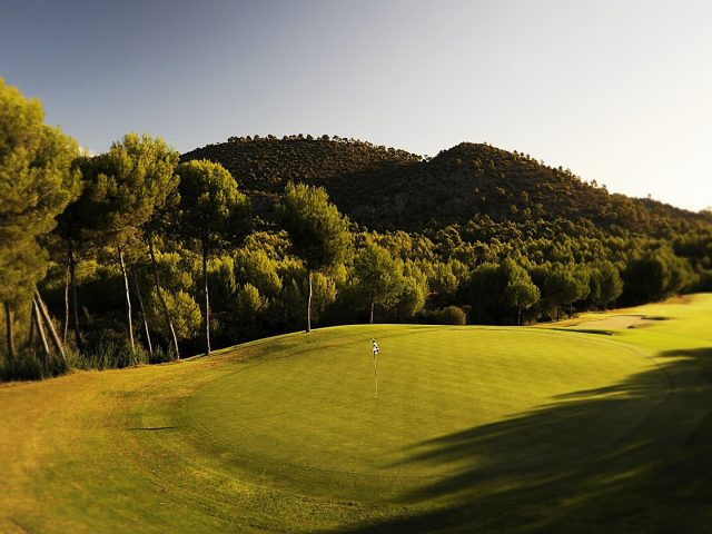https://www.costalessgolf.com/wp-content/uploads/2015/05/Son-Quint-Golf-640x480.jpg